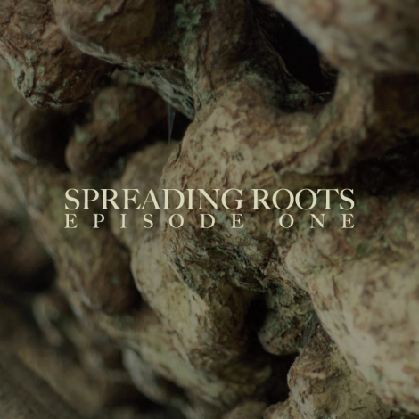 SPREADING_ROOTS_COVER