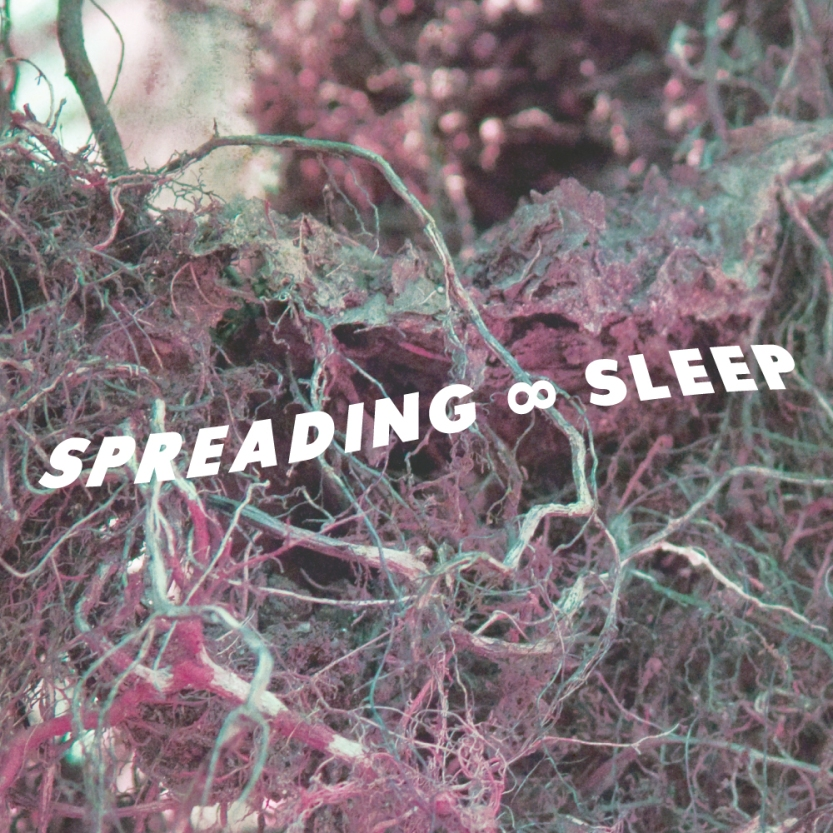 SPREADING_SLEEP_ART