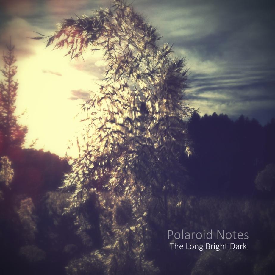 The Long Bright Dark, by PolaroidNotes