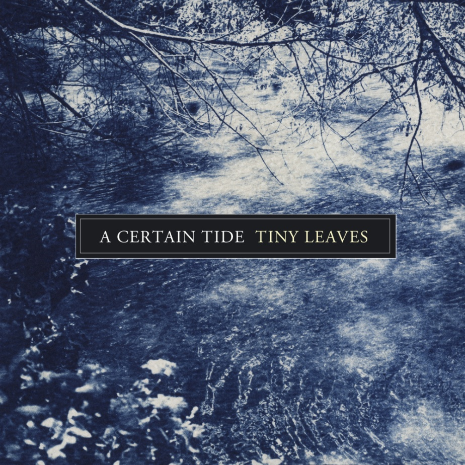 A Certain Tide, by Tiny Leaves