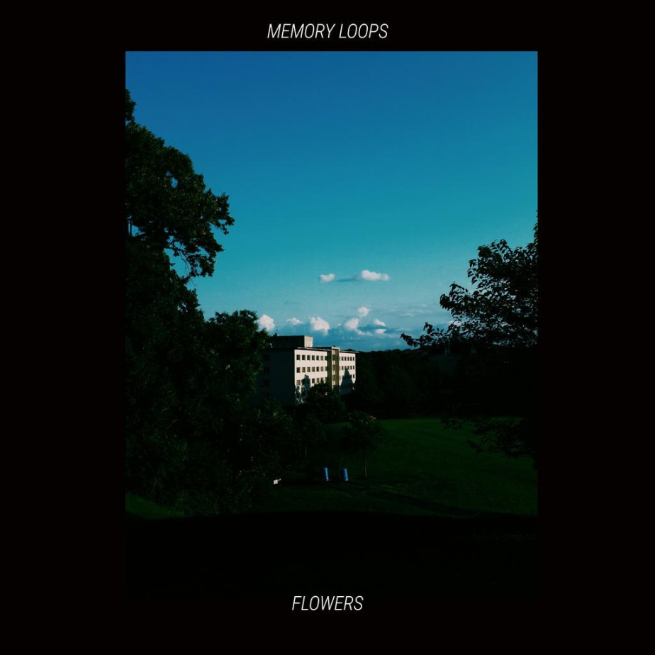 MEMORY LOOPS, by FLOWERS