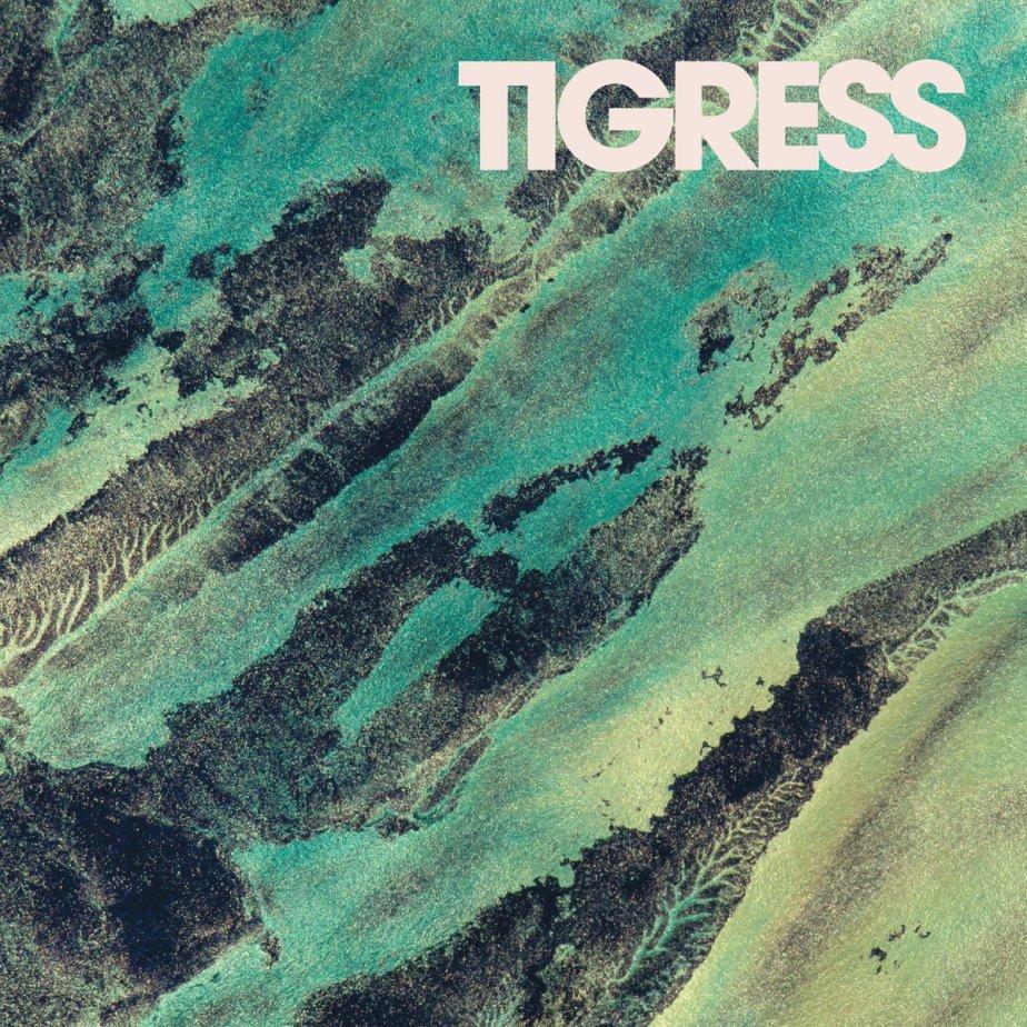 Tigress, by CoppiceHalifax