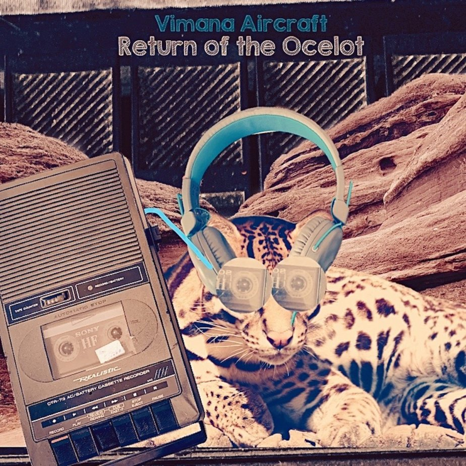 Return of the Ocelot, by Vimana Aircraft