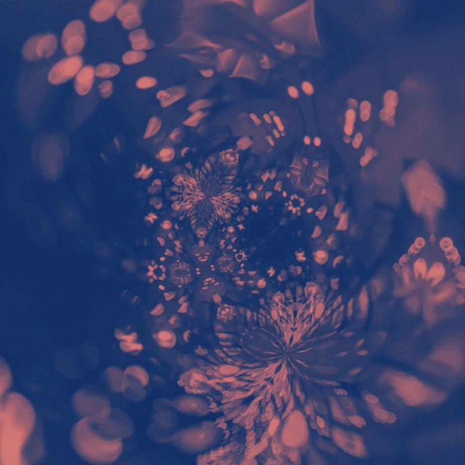 Circle Inside, bySelvedge